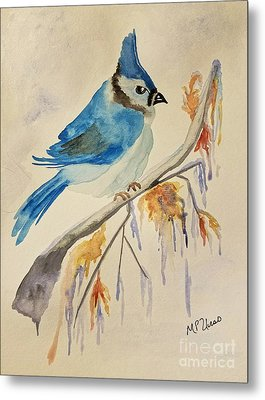 Winter Bluejay Metal Print by Maria Urso