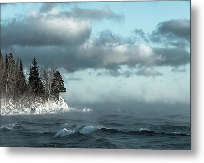 Winter Blues Metal Print by Mary Amerman