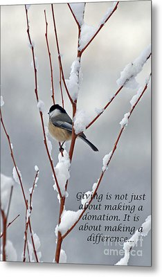 Metal Print featuring the photograph Winter Chickadee Giving by Diane E Berry