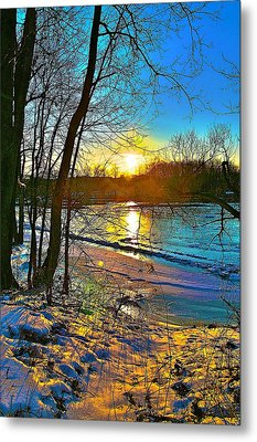 Winter Color Metal Print by Robert Pearson