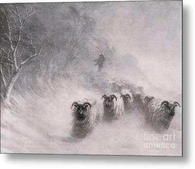 Winter Comes With A Stormy Blast Metal Print