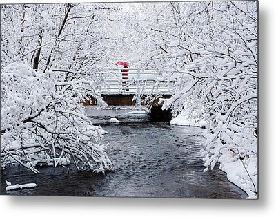 Winter Crossing Metal Print by Ron Day