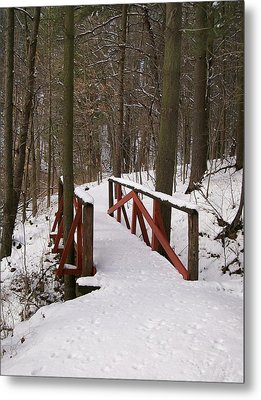 Metal Print featuring the photograph Winter Crossing by Sara  Raber
