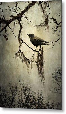 Winter Crow Metal Print