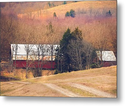 Winter Day On A Tennessee Farm Metal Print
