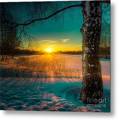 Winter Delight In British Columbia Metal Print by Rod Jellison