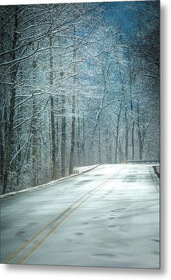 Winter Dreams Metal Print by Karen Wiles