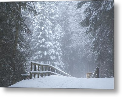 Winter Forest With Golden Retriever Metal Print