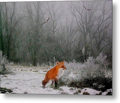 Winter Fox Metal Print