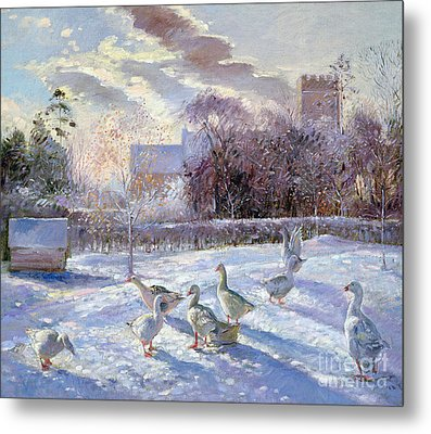 Winter Geese In Church Meadow Metal Print by Timothy Easton