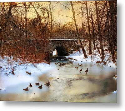Winter Geese Metal Print by Jessica Jenney