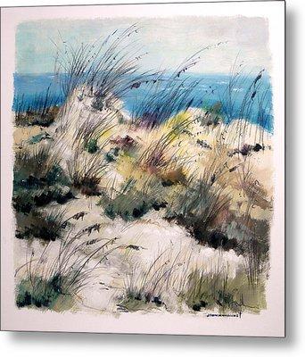 Winter Grasses Metal Print by John Williams