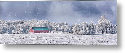 Winter Grey County Metal Print by Irwin Seidman
