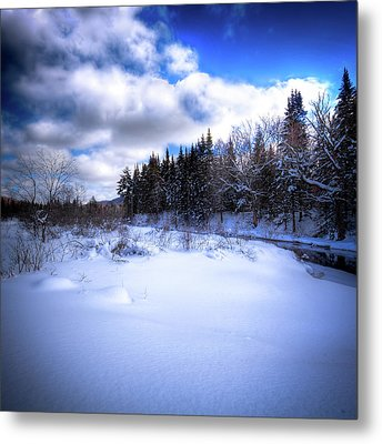 Metal Print featuring the photograph Winter Highlights by David Patterson