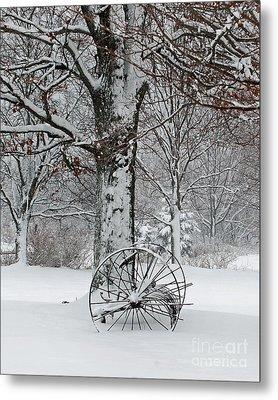 Winter Hush Metal Print by Diane E Berry