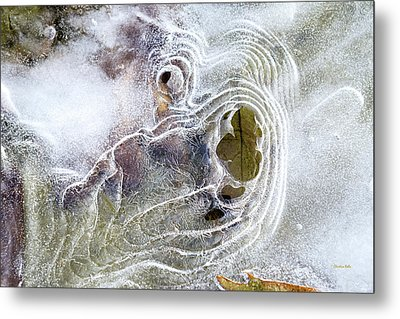 Metal Print featuring the photograph Winter Ice by Christina Rollo