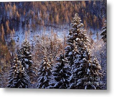 winter in Bavaria 8 Metal Print by Rudi Prott