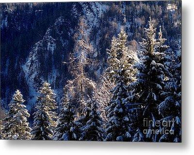 winter in Bavaria 9 Metal Print by Rudi Prott