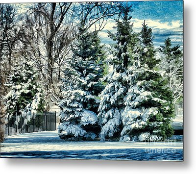 Winter In New England Metal Print by Judy Palkimas