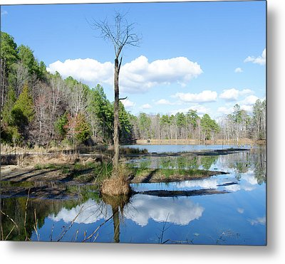 Metal Print featuring the photograph Winter Lake View by George Randy Bass