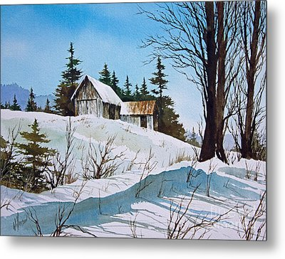 Winter Landscape Metal Print by James Williamson