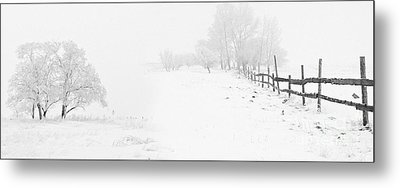 Winter Landscape - Pray For Snow Metal Print by Celestial Images