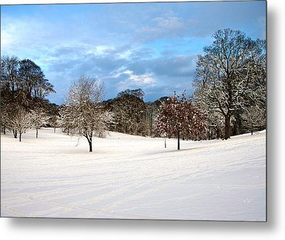 Winter Landscape Metal Print by Svetlana Sewell