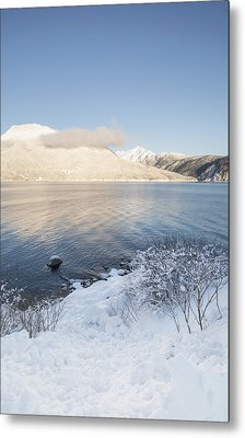 Winter Light Metal Print by Michele Cornelius
