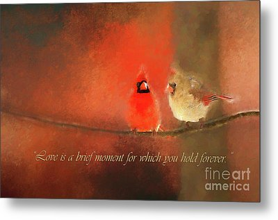 Metal Print featuring the photograph Winter Love2 by Darren Fisher