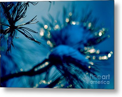Metal Print featuring the photograph Winter Magic by Susanne Van Hulst