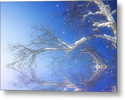 Winter Magic Metal Print by Trudy Wilkerson