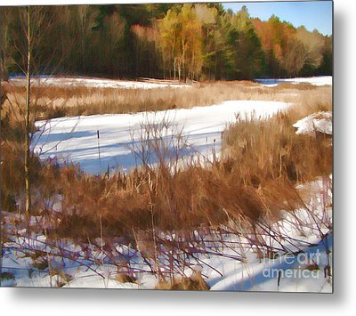 Metal Print featuring the photograph Winter Marsh by Betsy Zimmerli