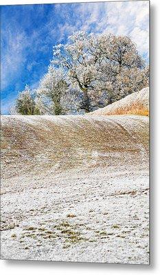 Winter Metal Print by Meirion Matthias
