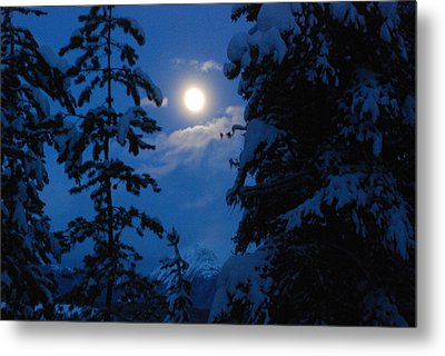 Winter Moonlight Metal Print