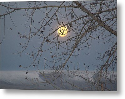 Metal Print featuring the photograph Winter Mornings by Al Swasey