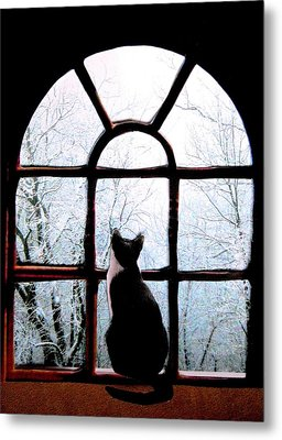Winter Musing Metal Print by Angela Davies