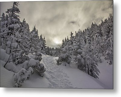 Winter On The Ammo Trail Metal Print