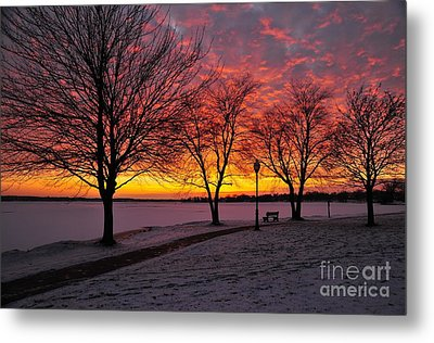 Metal Print featuring the photograph Winter Park by Terri Gostola