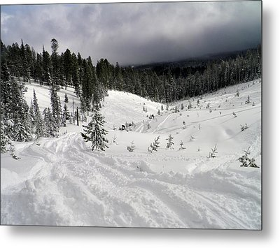 Metal Print featuring the photograph Winter Playground by Meagan  Visser