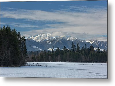 Metal Print featuring the photograph Winter by Randy Hall