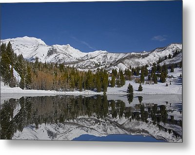 Winter Refelctions Metal Print