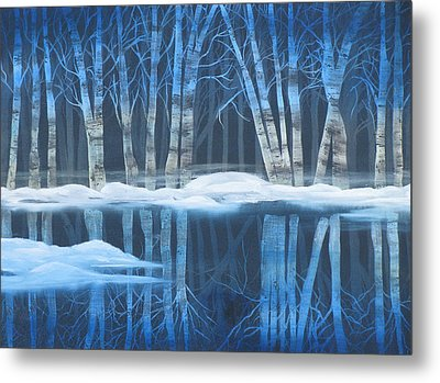 Winter Reflections Metal Print by Mikki Alhart