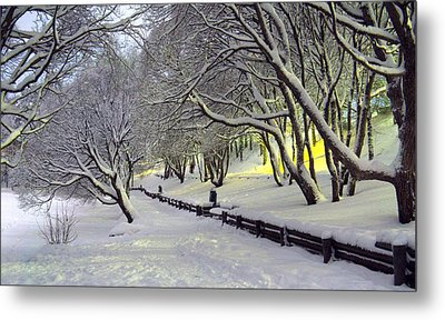 Metal Print featuring the photograph Winter Scene 1 by Sami Tiainen