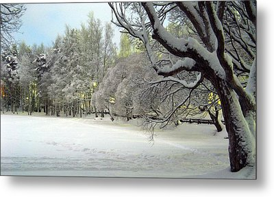 Metal Print featuring the photograph Winter Scene 3 by Sami Tiainen