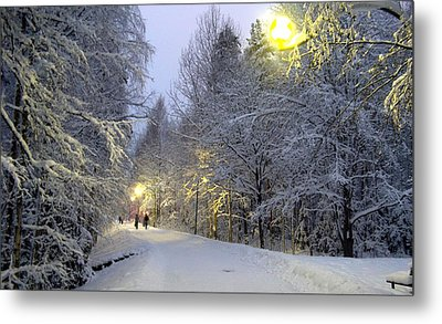 Metal Print featuring the photograph Winter Scene 5 by Sami Tiainen
