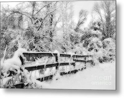 Winter Scene Metal Print by Kathy Jennings