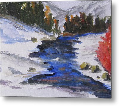 Winter Shades Metal Print by Trilby Cole