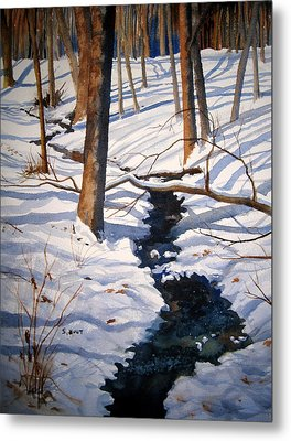 Winter Shadows Metal Print by Shirley Braithwaite Hunt