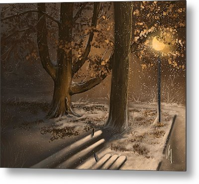Winter Silence Metal Print by Veronica Minozzi