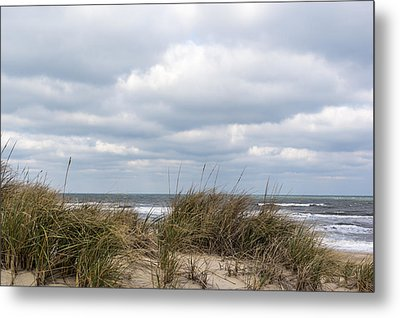 Winter Sky Metal Print by Gregg Southard